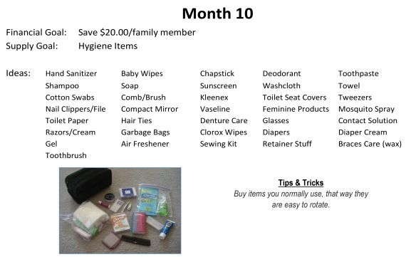 72-Hour Supply Kit Month 10